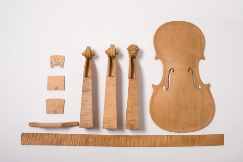 38603 Spruce wood violin construction